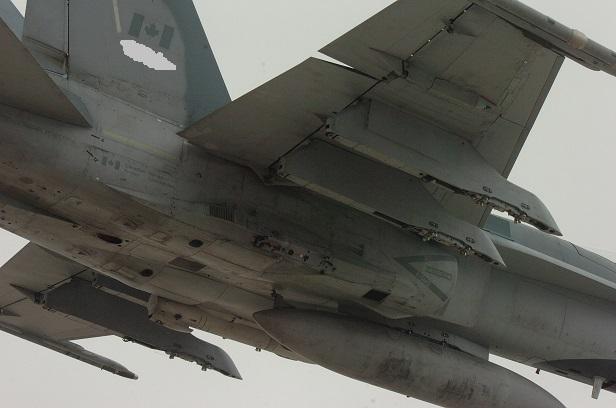 Hornet Under right.jpg