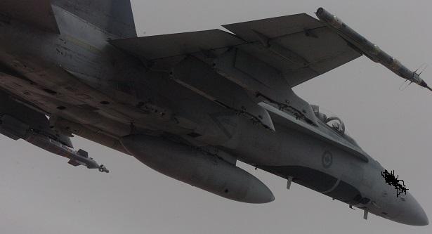 Hornet Under right v2.jpg