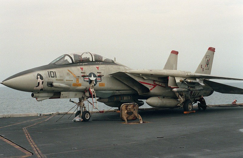 F-14A with nose art(1).jpg