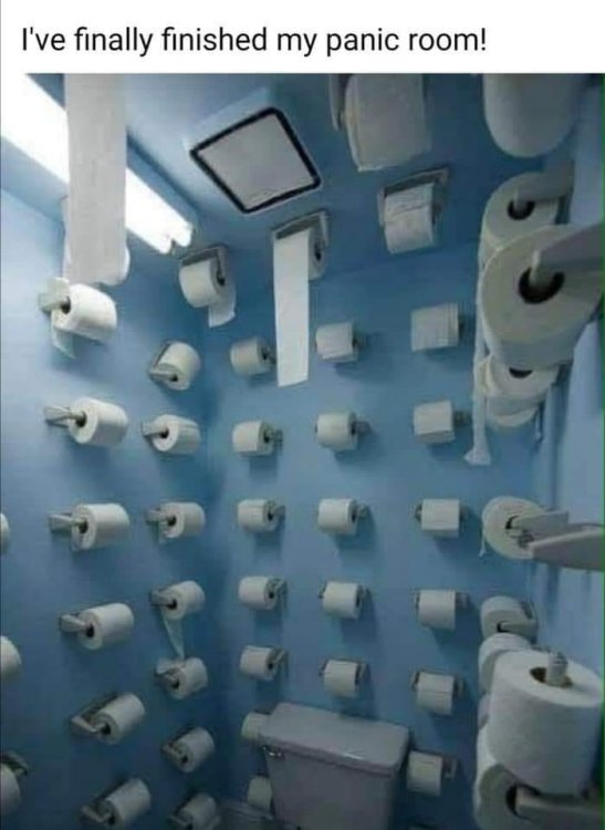 toilet paper bathroom.jpg