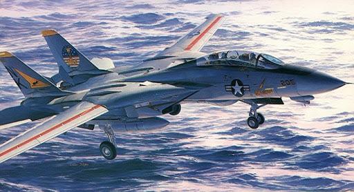 F-14A Hasegawa.jpg