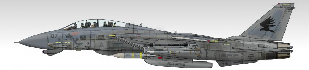 F14DISAFRedhawks2.thumb.png.7501e681ae49b60e476f3ac3676be290.png